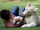 Lion cub Timba with owner Annel Snyman